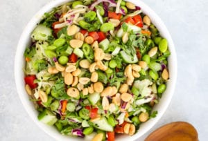 Easy Asian Cabbage Slaw with Ginger Dressing Recipe   FitLiving Eats by Carly Paige