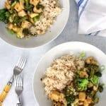 broccoli tofu stir fry overhead plated photo